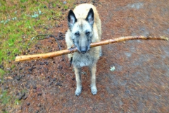 Alpha and a small stick :-)